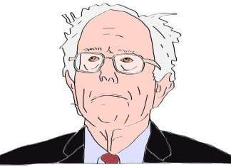 Bernie Sanders Cannabis