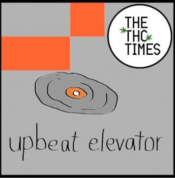Upbeat Elevator - The THC Times
