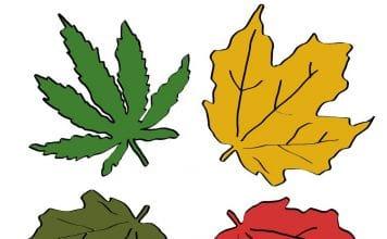 is marijuana legal in new hampshire