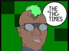 best of Green Velvet