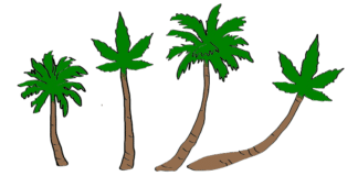 is-weed-legal-in-Fiji