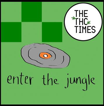 jungle music playlist