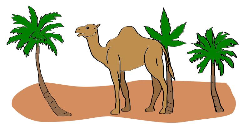 weed in Saudi Arabia